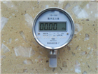 YS100,数字压力表,精密数字压力表