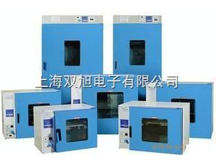 101-A-3電熱鼓風干燥箱101-A-3