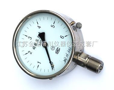 HC-YTH/YTF-耐腐耐高温压力表