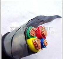 VV22 3*2.5+1*1.5电力电缆