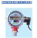 供应SBSY300系列数字压力变送器 数字显示压力变送器