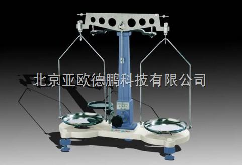 DP-TW-02B-物理天平