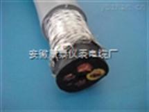 VVP2*16电力电缆