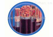 ZR-DJFP2VP2-30*2*1.5计算机电缆
