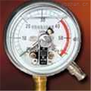 安徽天康YBF系列不銹鋼壓力表
