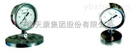 安徽天康YMN系列隔膜式耐震压力表