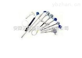 安徽天康 WRQ-131R型铂铑热电偶