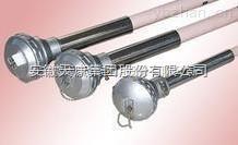 WRP2-130WRP2-130 WRR2-130高温贵金属(铂铑)热电偶S B R分度 天康热电偶