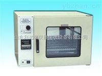 干燥箱/智能干燥箱/全自动干燥箱