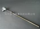 WRNF-230防腐热电偶