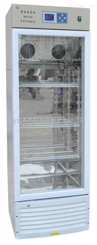 MPH霉菌培养箱