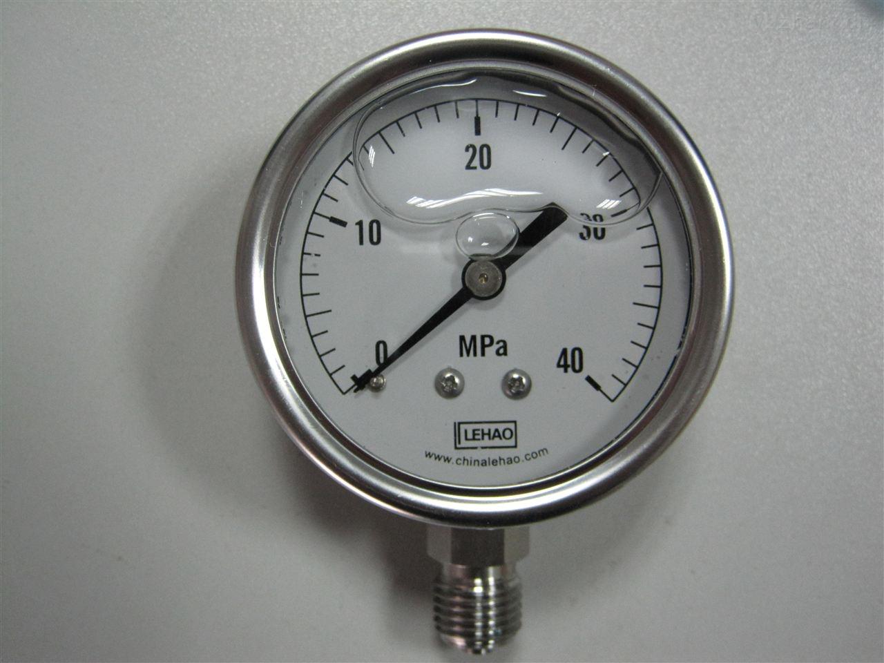 YTN-63-63耐震压力表