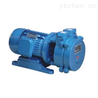 SK型-水环式真空泵