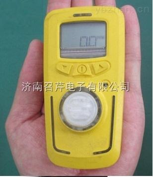 R10有害气体泄漏检测仪