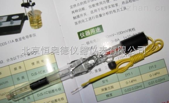 饱和甘汞电极          H-217/218/232