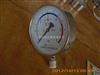 氢气压力表 YQ-100 0-6MPA
