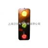 三相滑触线指示灯/三相滑触线指示灯品质保证