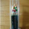 WDZ-BPYJEP3*70+1*35变频电缆